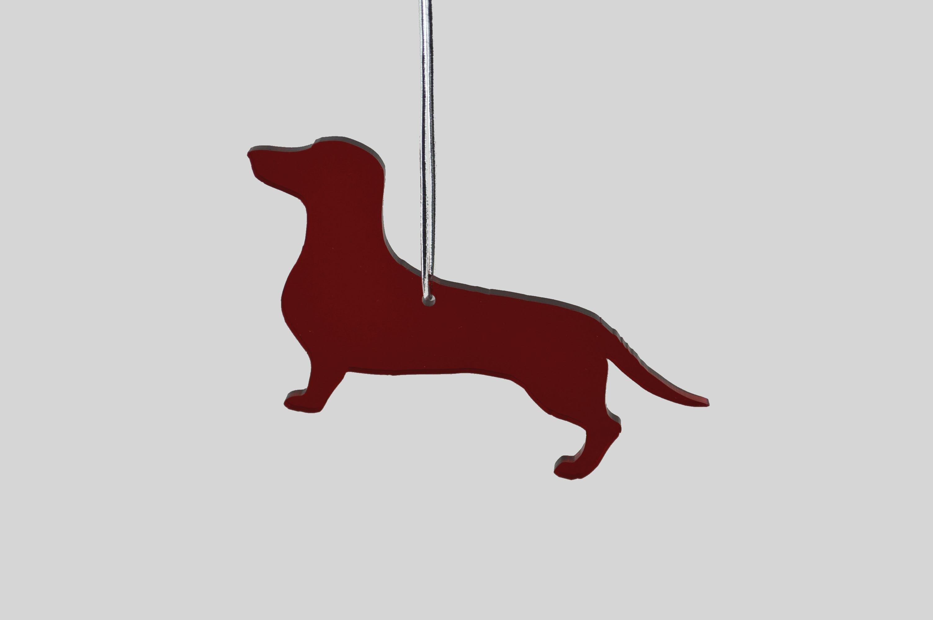 dachshund red tint